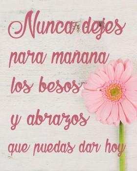 Nunca dejes para mañana los besos y abrazos que puedas dar hoy